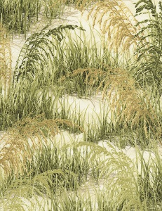 Beach by Timeless Treasures C5354 Grass