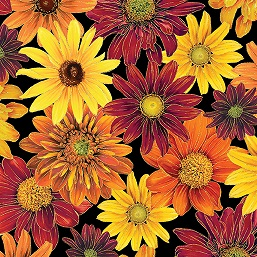 Autumn Splendor Tossed Mums 8412-12