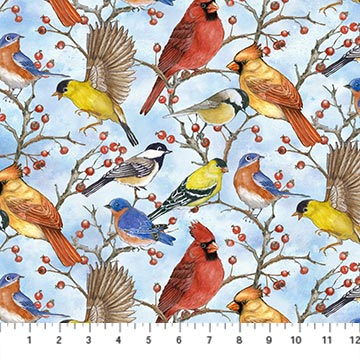 Bird Song Birds 22432-41