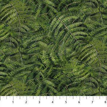 Day Dreams ferns 23112-74