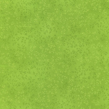 Willow- Lime green C4794