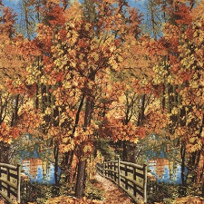 Nature Autumn Scenic Panel by Timeless Treasures C3568