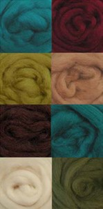 Wool Roving Assorted Chic Colors