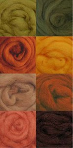 Wool Roving Autumn colors W891R