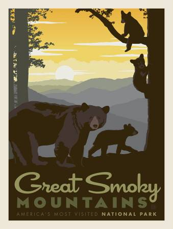 Great Smoky Mnt panel P8792R-GREAT