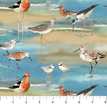 Shore Thing Shore Birds 22070-42
