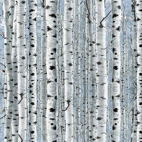 Timberland Trail Birch Trees 26808B