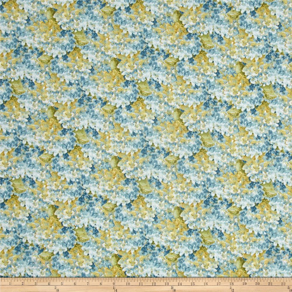 Rainbow Seeds Blue Hydrangea 1409 86420 447
